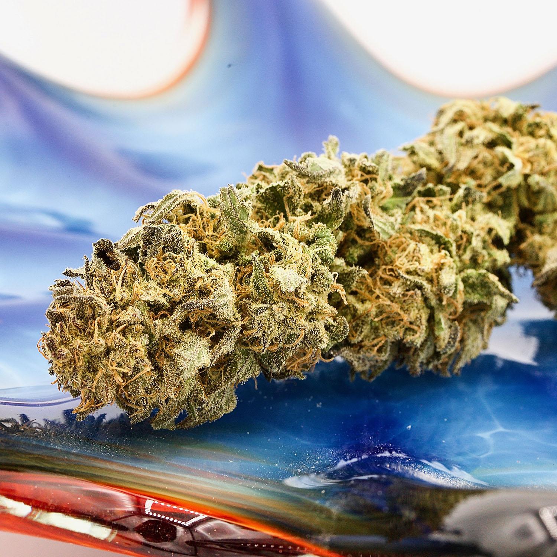 Puffin Cannabis Strains | Puffin Farm